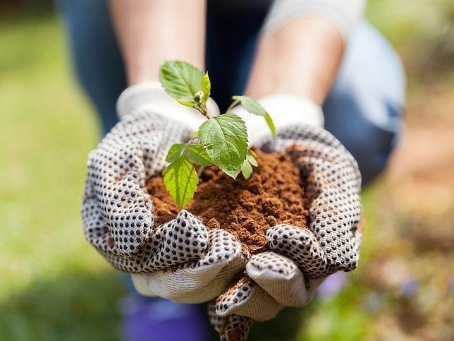 coach jardinier