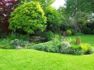 Jardin strates végétation